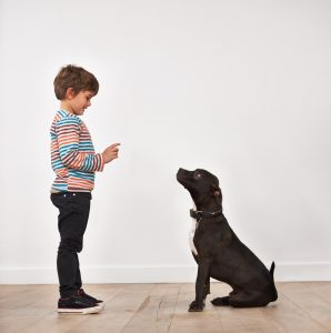 Here are some good steps for training a new dog.